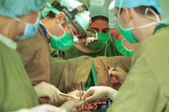 Самарские биотехнологи будут выращивать «запчасти» для сердца и других органов