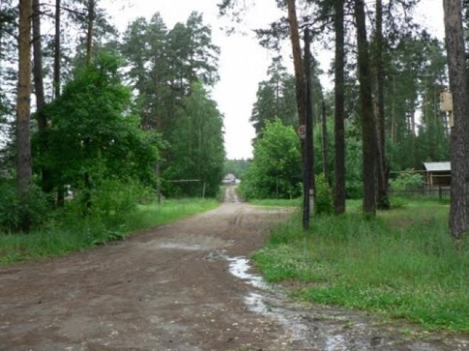 Жителей Самары приглашают обсудить застройку пригородного лесничества