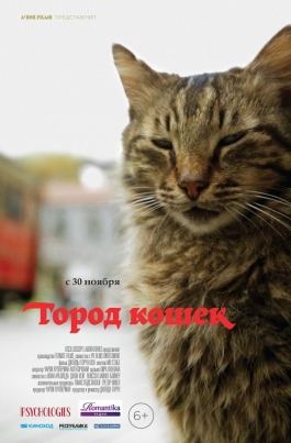 Город кошекKedi постер