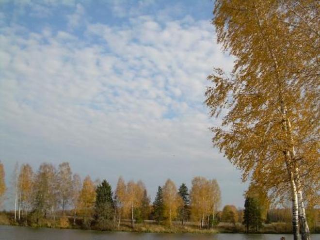 В Самарской губернии появятся три десятка новых особо охраняемых природных территорий
