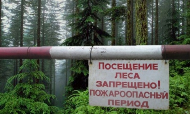 В Самарской области прогнозируется чрезвычайная пожароопасность лесов