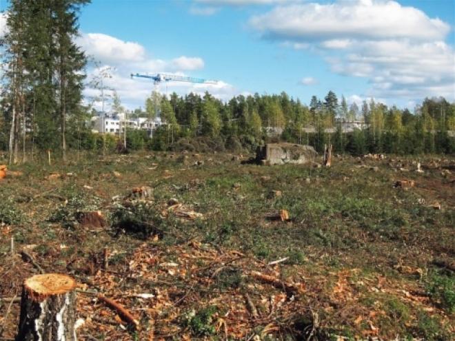 Участок в 52 гектара передан Самарской области для решения проблем обманутых дольщиков