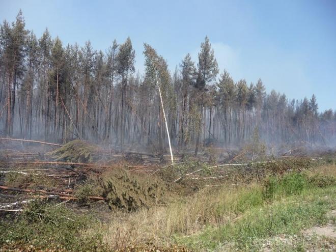 Четвертый класс пожароопасности сохраняется в 11 районах Самарской области