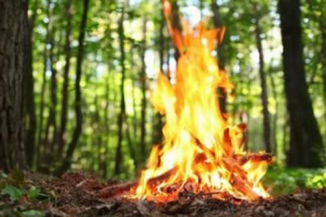 Названы самые пожароопасные города и районы Самарской области