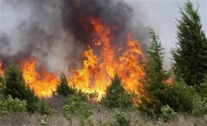 В Самарской области сохраняется высокий класс пожарной опасности