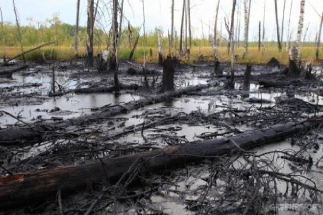В Самарской области на нефтяном трубопроводе произошла авария